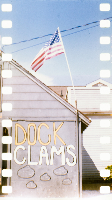 dock clams